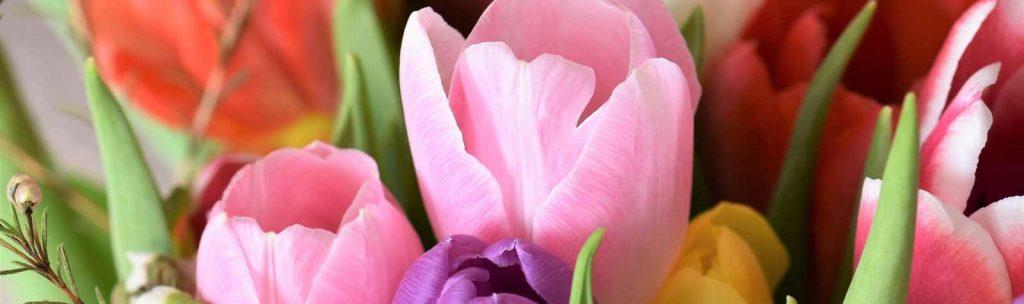 Export: a rischio floricoltura